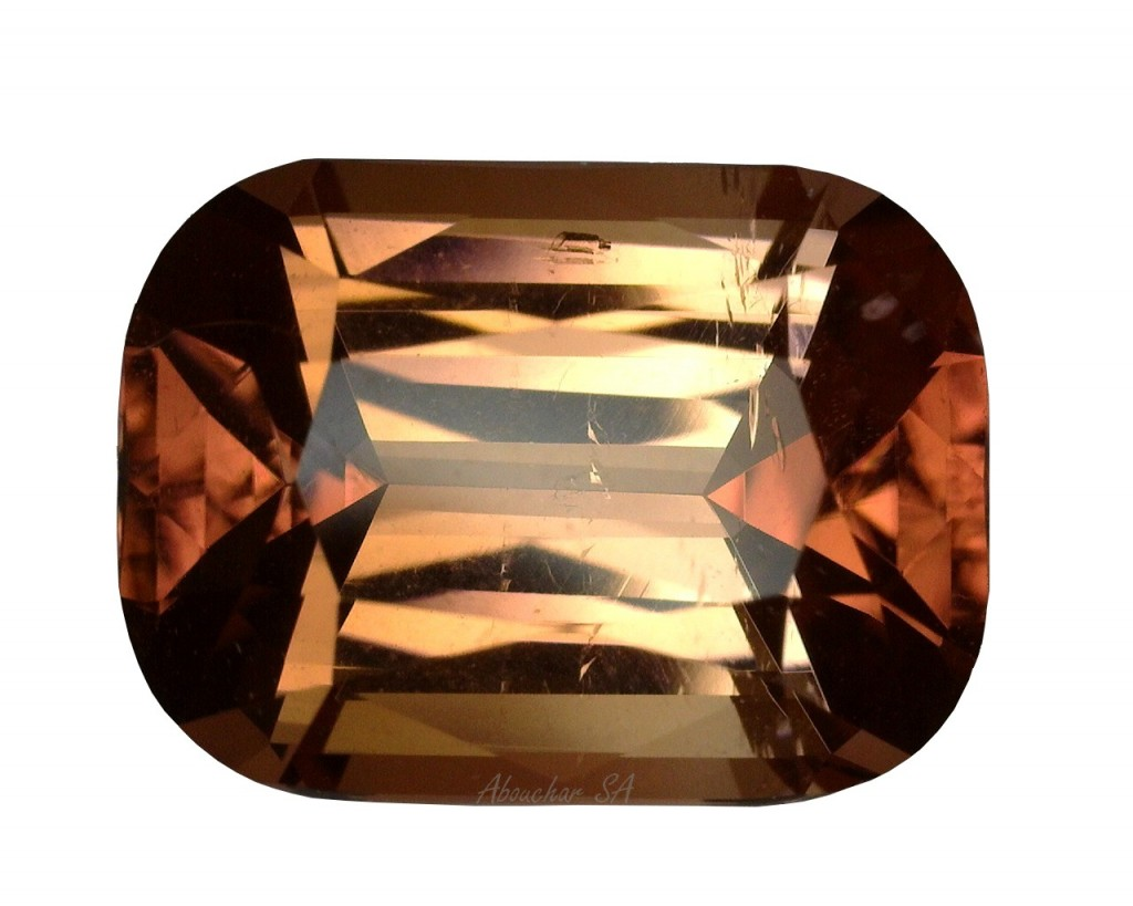 3.37 Tourmaline CS Bicolor 01-1108''