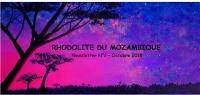 Newsletter 2 - Rhodolite du Mozambique