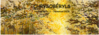 Newsletter 3 - Chrysobéryls